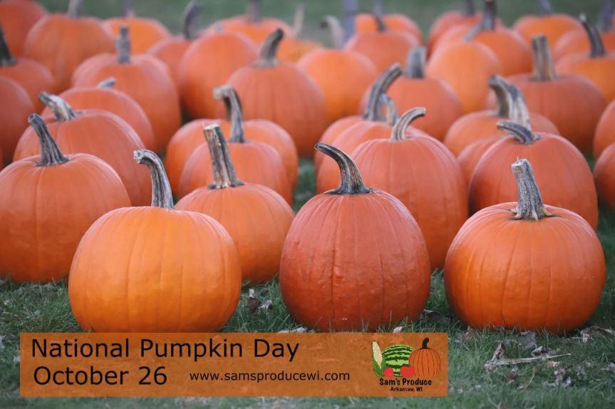 National Pumpkin Day!🎃