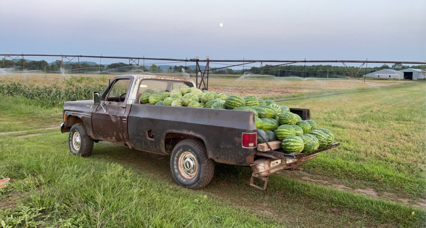 Produce Update August 23,2021